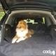 Cadog 車用寵物墊-後車廂專用墊_CP-CM003