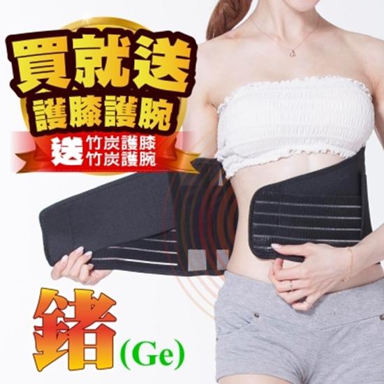 護具 護腰帶