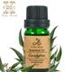 ThaiScent泰香 尤加利100%純精油(10ml)