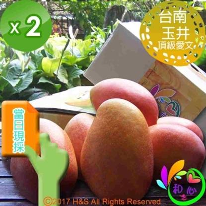 圖片 《和之心》頂級愛文芒果禮盒(5至8顆5斤)2入組