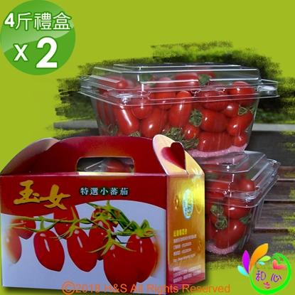 圖片 《和之心》頂級溫室玉女番茄4入禮盒(600克/入)2組