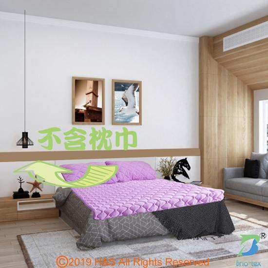 圖片 【Brio-tex】非動力式涼暖兩用床墊