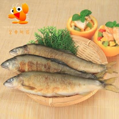 圖片 【金車】香魚(母魚/含卵x2)+香魚(公魚x3)超值組F