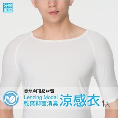 圖片 !涼感衣 冰礦咖啡抑菌消臭 透氣清爽 男法式短袖上衣-白色-XL
