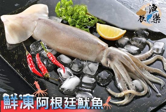 圖片 農漁樂阿根廷野生超大尾鮮凍魷魚組