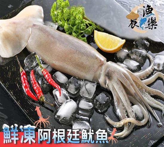 圖片 【農漁樂】遠洋捕撈阿根廷海域大尾鮮凍魷魚組-美