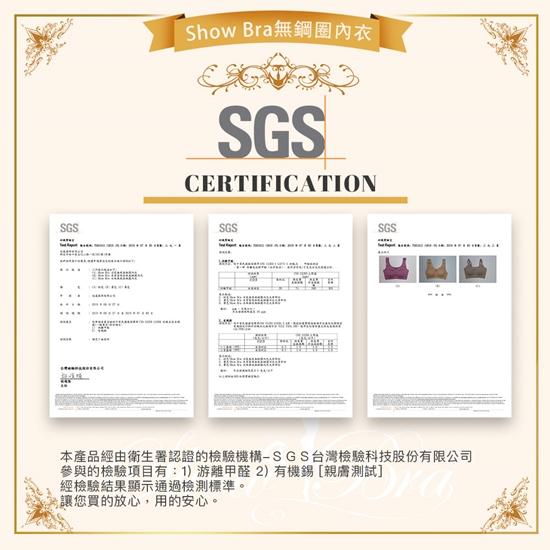 圖片 【Show Bra】日本同步SGS認證美背無鋼圈蕾絲內衣(共四色)