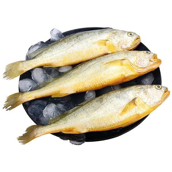 冷凍 水產 魚