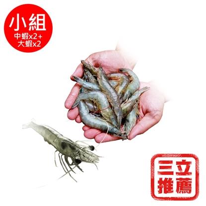 【漁仁】益生菌養殖台東海白蝦綜合組-電