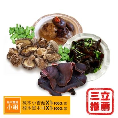 【盈盈農圃】有機台灣椴木雙寶組(香菇/黑木耳)-電