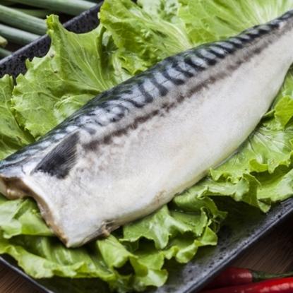 圖片 【漁季】挪威薄鹽鯖魚片160GX18片-電