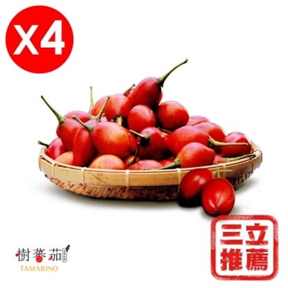 圖片 【草地狀元】春霖山園 無毒栽種 (紅寶石樹蕃茄)鮮果 4盒組(600G/盒)-電