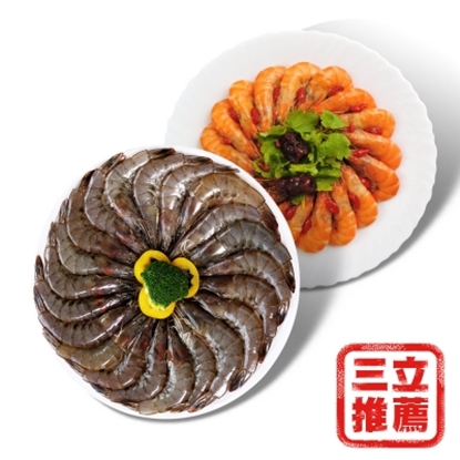 圖片 【中晏生機】台東晏蠦+晏白蝦小組-電