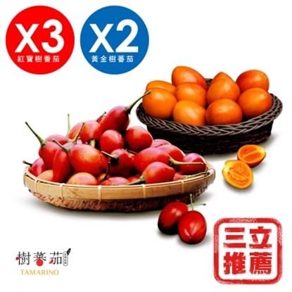 圖片 春霖山園 無毒栽種鮮採樹蕃茄(紅寶石+黃金)5入組-電