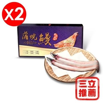 圖片 【德益發】 黃金生鰻魚排大組-電