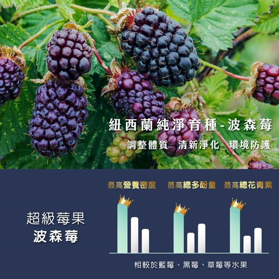 圖片 【歐瑪茉莉】速立新波森莓14包*3盒 +維生素D提升保護