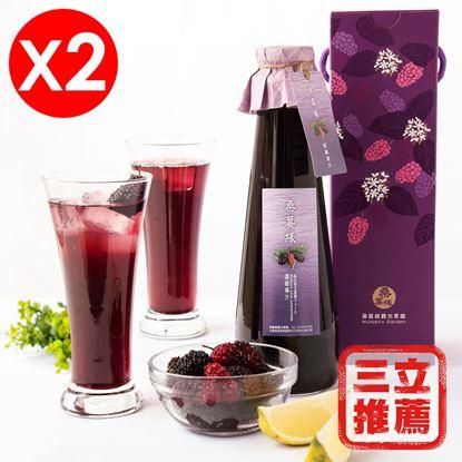 【草地狀元】桑葚濃縮果汁600mlX2