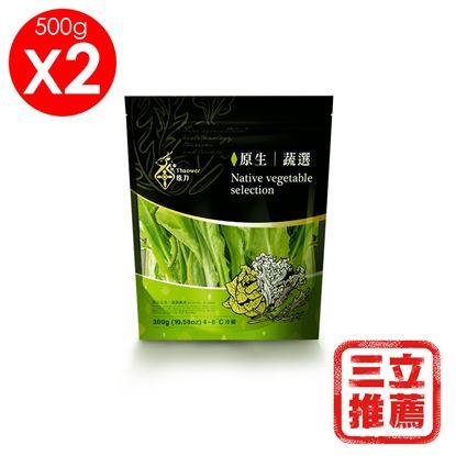 圖片 【草地狀元】原力生技休閒農場蔬選綜合生菜500g*2