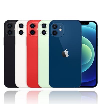 Apple iPhone 12 256G 防水5G手機※送保貼+保護套※