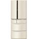 Panasonic國際牌601公升六門變頻冰箱香檳金NR-F604VT-N1