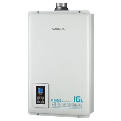 (全省安裝)櫻花16公升強制排氣(與DH1670A/DH-1670A同款)熱水器桶裝瓦斯DH-1670AL