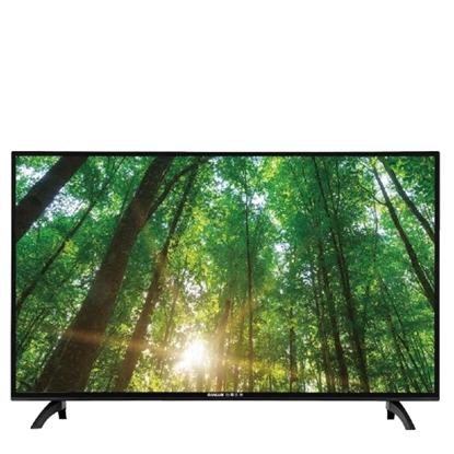(無安裝)SANLUX台灣三洋43吋電視SMT-43MA5 不含視訊盒