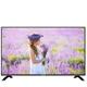 (含運無安裝)大同50吋電視TA-V5000A