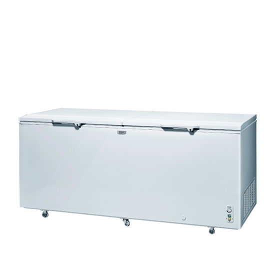 掀蓋 冷凍櫃