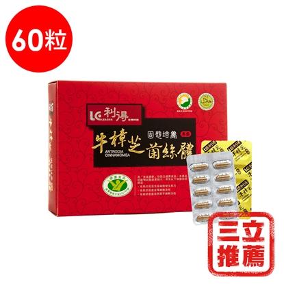 利得健字號牛樟芝固態培養菌絲體膠囊 60粒/盒-電