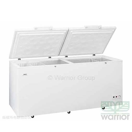 環保 冷凍櫃
