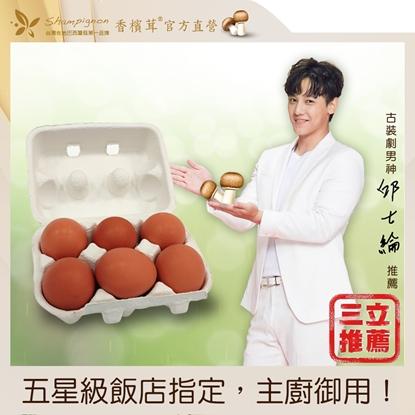 樂活生技香檳茸雞蛋(邱士綸養身蛋)超值組(6顆/盒)*6)-電