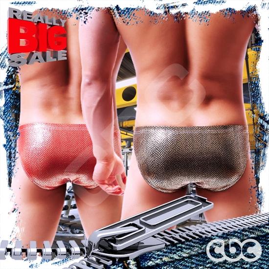 圖片 【I-no-logo】斯巴達戰士兵器部窄版三角褲 激凸性感 猛男必備 BF0016
