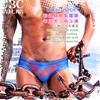 圖片 OBEACHSPORT彩虹驕傲紫羅蘭窄版男三角泳褲☆附可拆卸護盃 SW0196