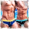 圖片 Desmiit  歐漾時尚特仕款窄版三角男泳褲 激凸 性感 型男 狂潮 SW0001
