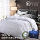Hilton希爾頓 五星級奢華風100%喀什米爾優質小羔羊毛被/3.0kg(B0883-H30)