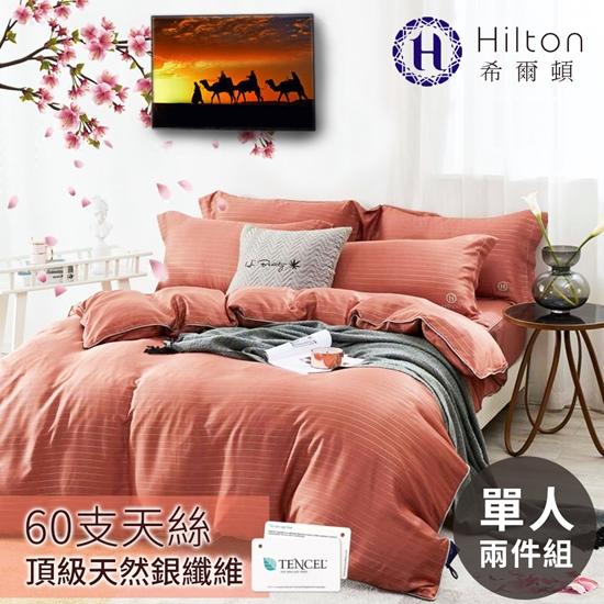 圖片 Hilton 希爾頓 仙境系列頂級60支紗純100%天絲銀纖維床包兩件套-單人/二色任選(B0888-S)