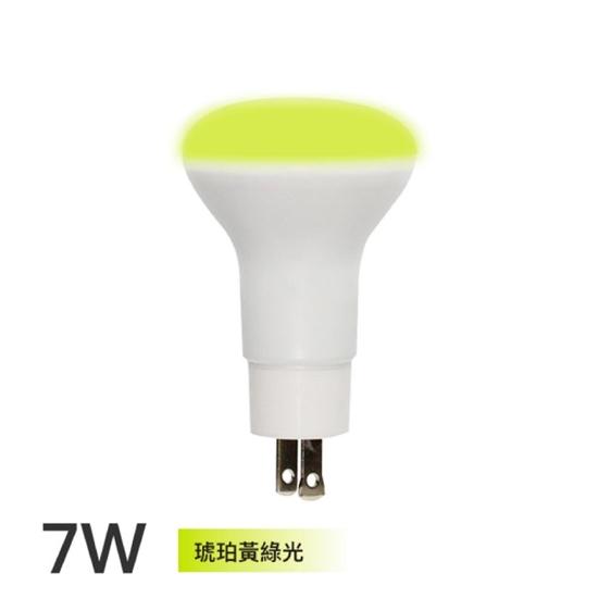 toyama 燈泡