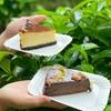 圖片 【蛋糕雙拼系列】原味巴斯克乳酪 X 巧克力布朗尼 8吋