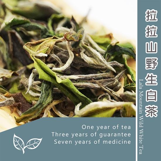 白茶 茶葉
